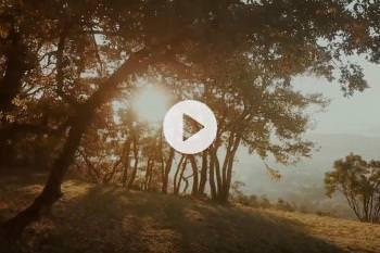 20191209-1530-video-saintmartory.jpg